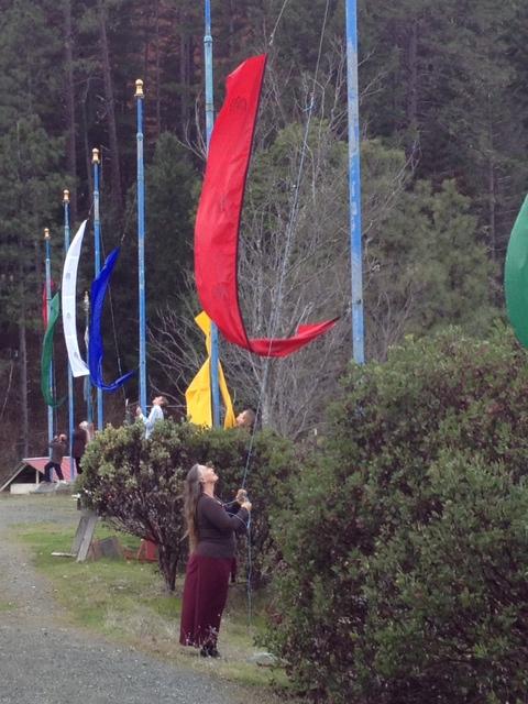 Lama Tsering arrives at Rigdzin Ling and raises Manjushiri prayer flags