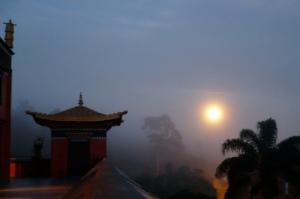 Odsal Ling à neblina